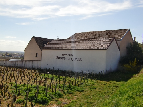 DOMAINE ODOUL-COQUARD